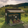 Huon apple cart